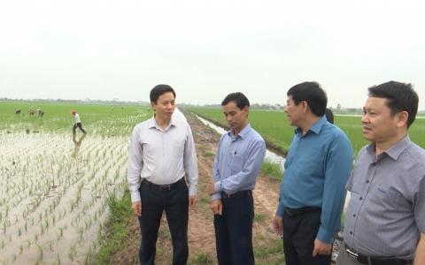 Không để dịch bệnh gây ảnh hưởng đến sản xuất và chăn nuôi