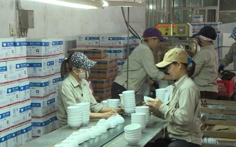 Khai thác hiệu quả lợi thế Khu kinh tế Thái Bình