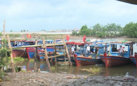 Ngư dân Thái Thụy hướng về ngày bầu cử