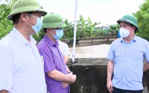 Thái Bình: Kịp thời tiêu úng bảo vệ sản xuất nông nghiệp
