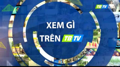 Xem gì trên TBTV 13-8-2021